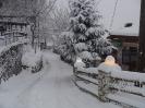 Χιονόπτωση στη Φυλακτή 30/31-12-15_11