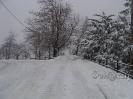 Χιονόπτωση στη Φυλακτή 30/31-12-15_16